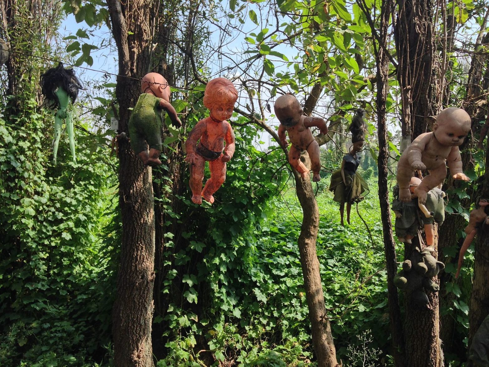 Island of the Dolls in Mexico | A Suspense Horror Mystery – Jeremy Bates Books